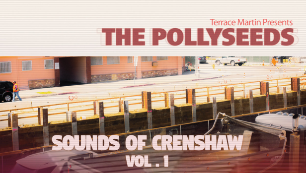 Pollyseeds sounds vol 1 WS